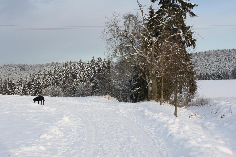 Winterweg Mühle