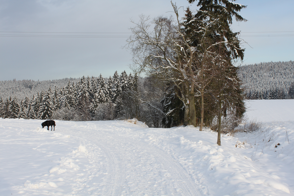 Winterweg M�hle