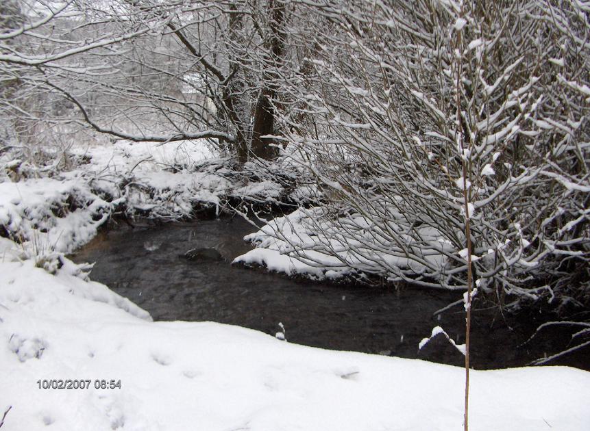 Luppbode Winter